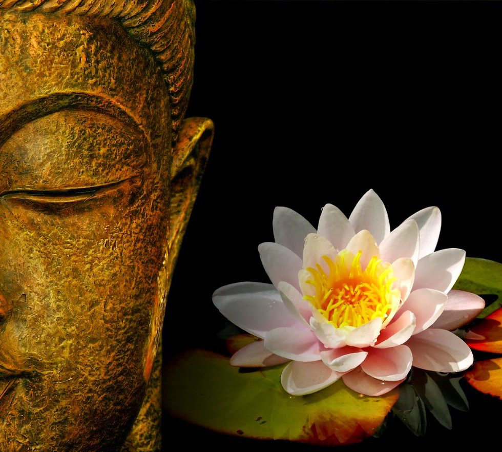 buddha-face-with-lotus-flower-hd-wallpaper
