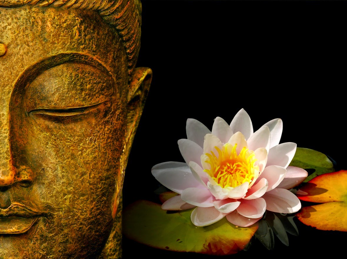 Buddha Face With Lotus Flower Hd Wallpaper